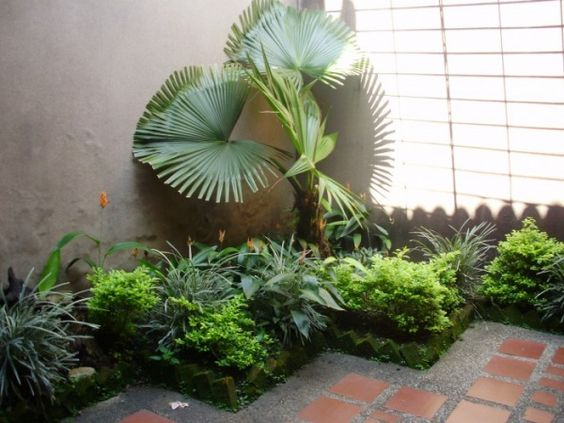 Interiors pictures and search on pinterest - Casas con jardin interior ...
