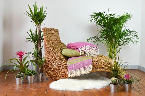 Tropical Lifestyle | The Tartan Blanket Co.