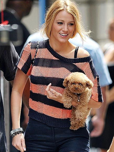 Blake Lively carried her dog Penny, with Ryan Reynolds's pup Baxter following closely behind, on the NYC set of Gossip Girl today. Blake also flashed her diamond engagement ring as she chatted on.