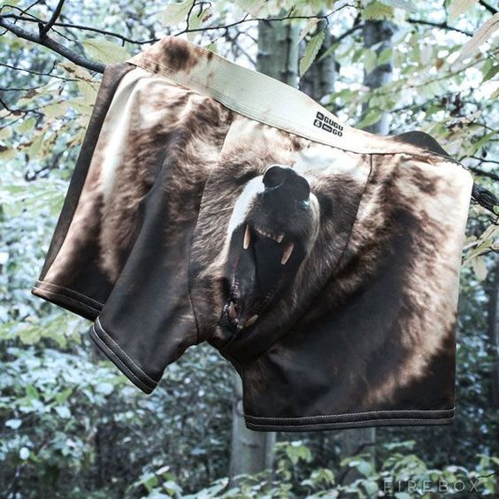 Grizzly in der Hose - http://www.dravenstales.ch/grizzly-in-der-hose/