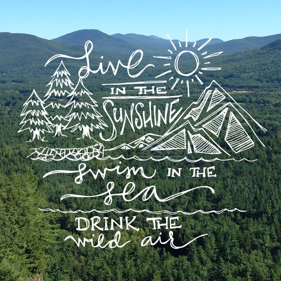 Live in the Sunshine, Swim in the Sea, Drink the Wild Air // Handlettering by @LightRustStudio: