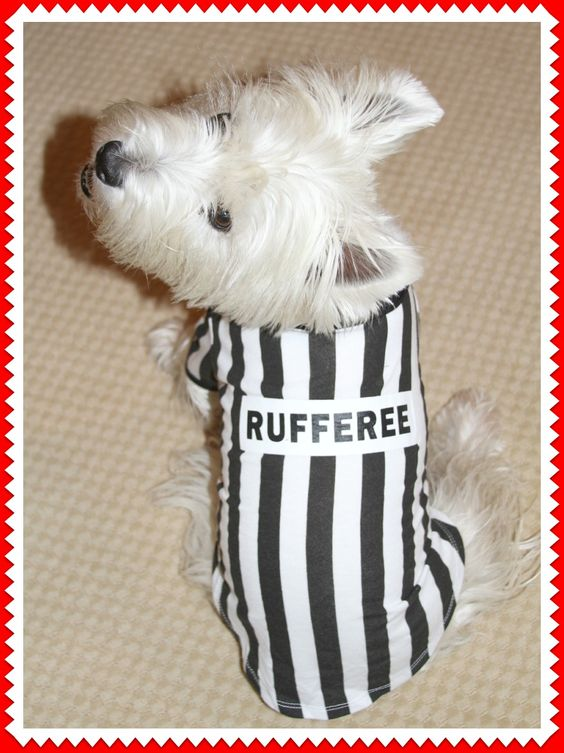 Cute wish my dog was a RUFFEREE and not RUFF at times too.
