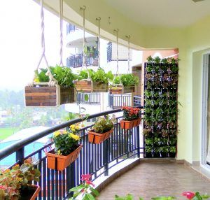 Indoor Garden Ideas Kerala