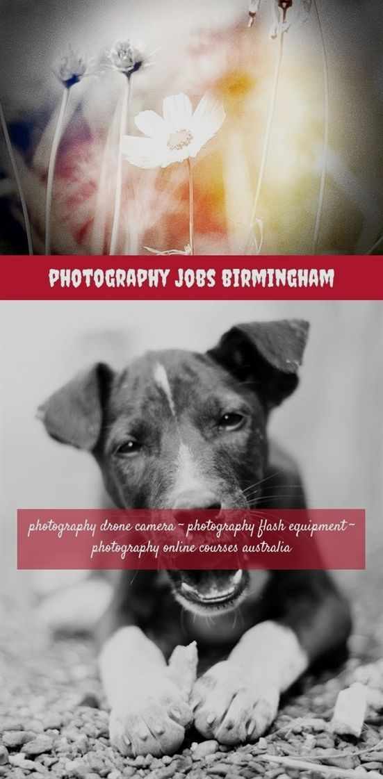 Photography Jobs Birmingham 391 20180711170838 31 Photography At Home Lighting Fu Photography Editing Apps Blog Photography Digital Photography Magazine