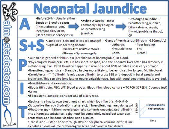 Neonatal Jaundice | almostadoctor.com - free medical student revision notes