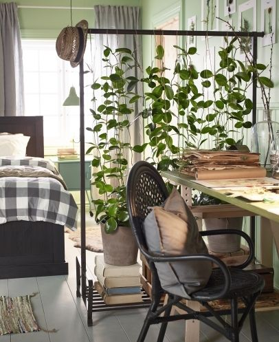 clever room divider - clothes hanging rack with plants