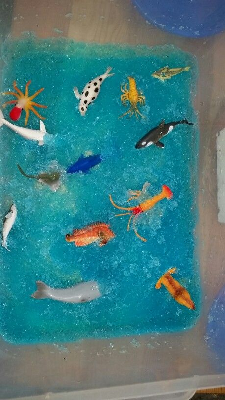 1 tsp gelatin, few drops water colour, 1 l water and some sea animals for sensory play
