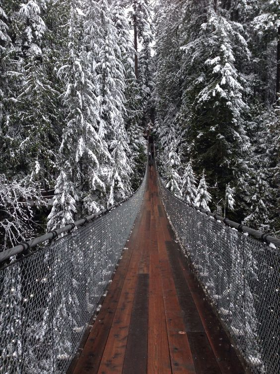 Capilano Suspension Bridge, Vancouver. ALREADY DONE! But I would love to go when it has snow!!!!: