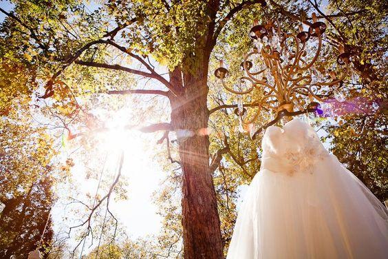 gorgeous dress shot.