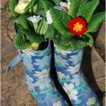 Get a container garden ready for Spring - from Wellies to Colanders. What unusual item have you converted into a plant pot?