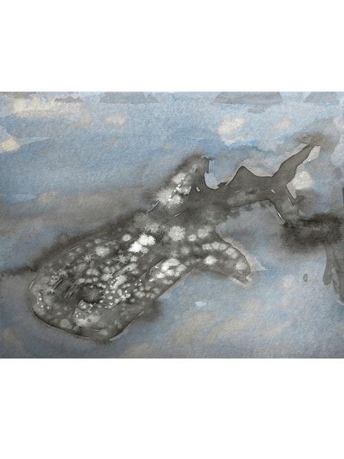 Whale Shark print