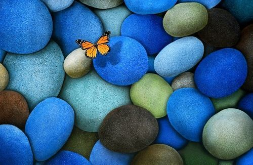 Blue stones & butterfly