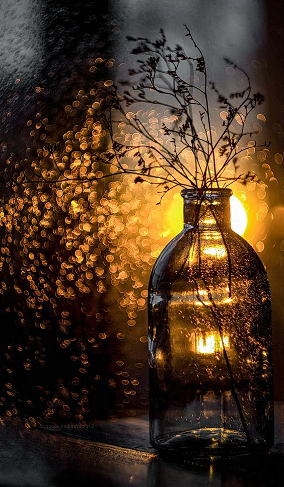 """"""" . . . the darkness of night and the sky writing of the stars, indecipherable to us mortals, despite our attempts to force narrative upon them."""" ~ Elizabeth Berg"""