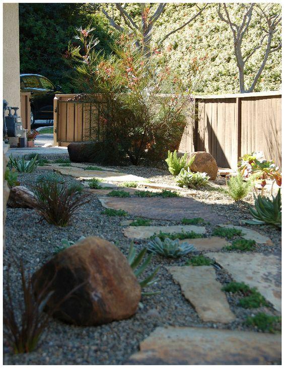 grevillea garden by living gardens landscape design - Living Gardens Landscape Design