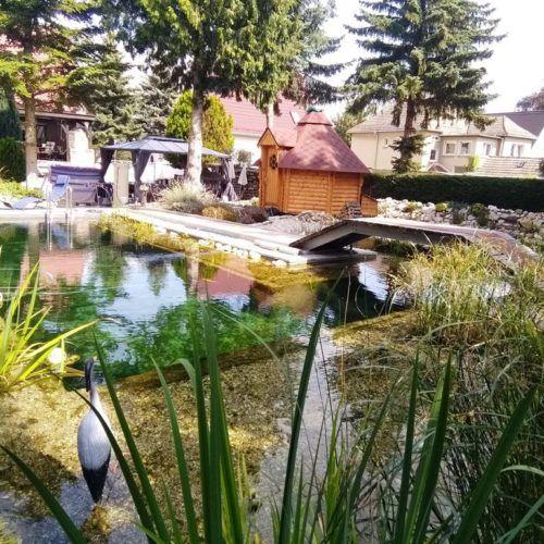 Schwimmteich Bei Halle An Der Saale Mielke S Naturbadeteich Schwimmteich Naturschwimmbecken Naturschwimmteich