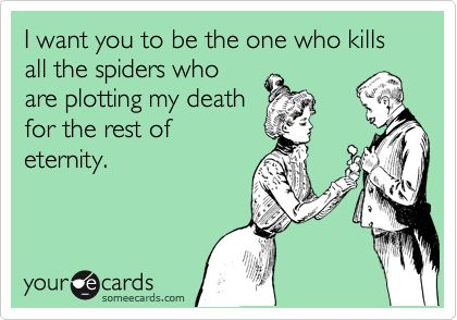I want you to be the one who kills all the spiders who are plotting my death for the rest of eternity.