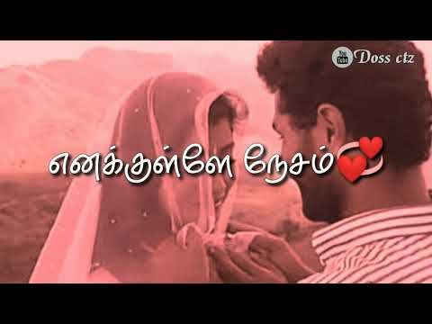Kannukulle Unnai Vaithen Kannamma Pennin Manathai Thottu Tamil Whatsapp Status Youtube Status My Arts Youtube