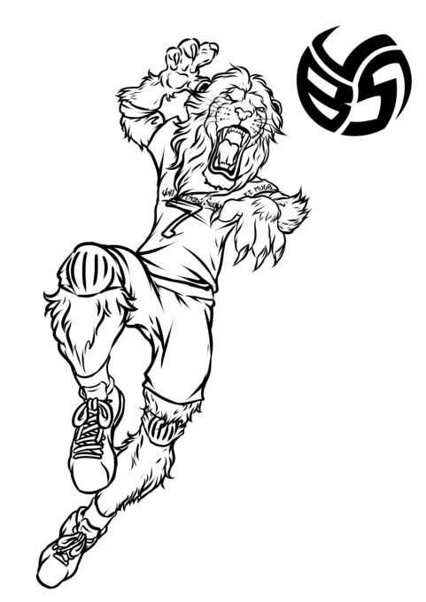 Volleybragswag Coloring Book For Kids Has Fun Animal Coloring