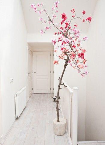 Bloesemtakken zijn een leuk #roze detail voor in huis of op #kantoor