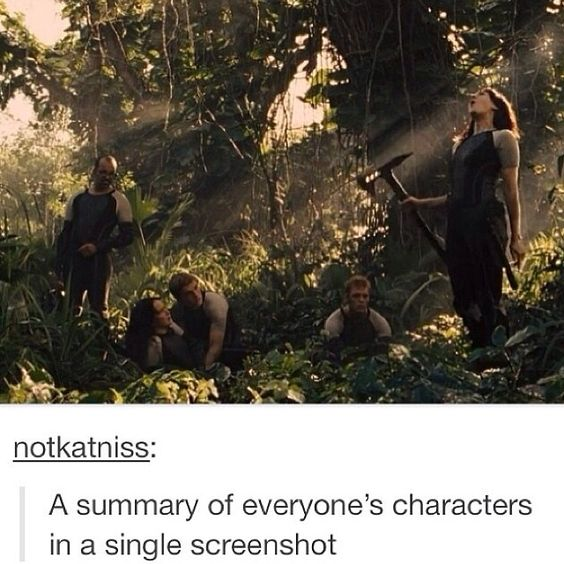 catching fire - yeah, pretty much.  Finnick's just kind of back there like chilling out.  Peeta's like protecting Katniss (aw) and Katniss is sitting there glaring at everyone.  Beetee's just kind of watching Johanna with that apprehensive look on his face.  Johanna...well, she's doing what she does best.