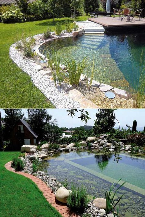 17 Family Natural Swimming Pools You Want To Jump Into Immediately Natural Pool Backyard Pool Garden Pool
