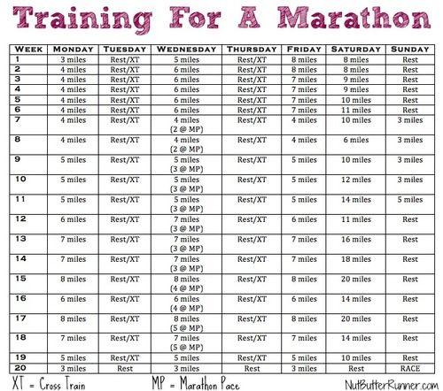 Marathon Training Program Iu0027m considering this program to prep for - sample training calendar
