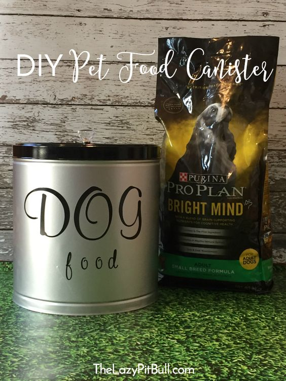 Check out this fun and simple #DIY pet food canister, and also learn how to enter to win a trip to the 2018 Westminster Kennel Club Dog Show! #ad #TheDogumentaries #CollectiveBias http://www.thelazypitbull.com/diy-pet-food-canister/