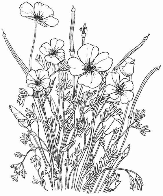 fleur à colorier  | Dididou - coloriage fleurs - page 2