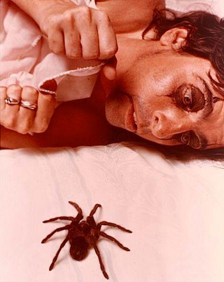 Alice Cooper and a tarantula. (1975)