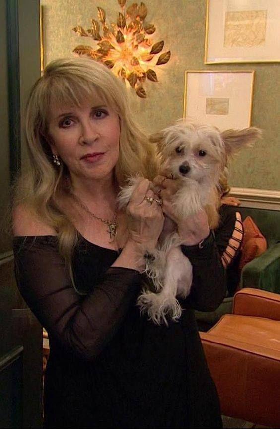 Stevie With Her New Little Dog Lily Stevie Nicks