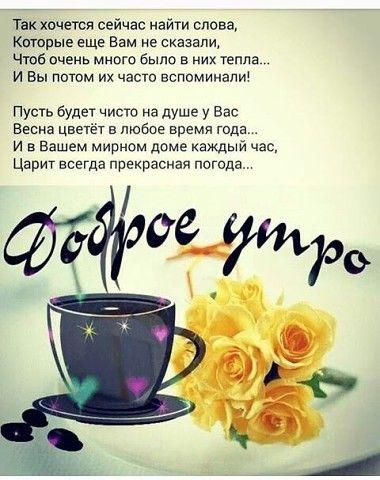 Fotografiya Dobroe Utro Utrennie Citaty Utrennie Soobsheniya