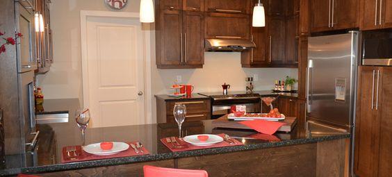 Cuisine bois brun porte en merisier mod le shaker teint for Moulure armoire cuisine