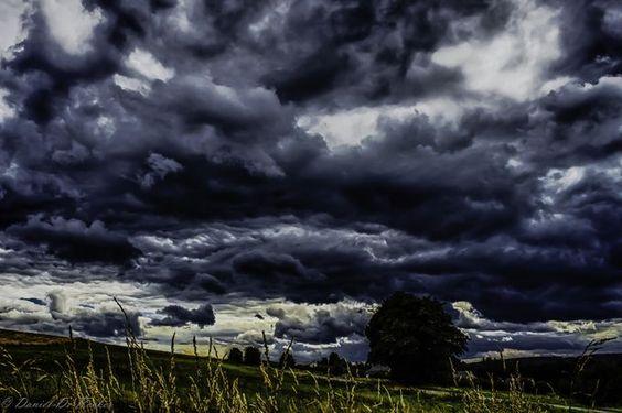 "Photo ""IMG_5651_HDR"" by danielderocker Bastogne region Belgium"