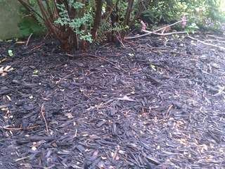There are many benefits to adding mulch to your flower beds and walkways. In today's Angie's List report, we show you what types are available and how much to buy