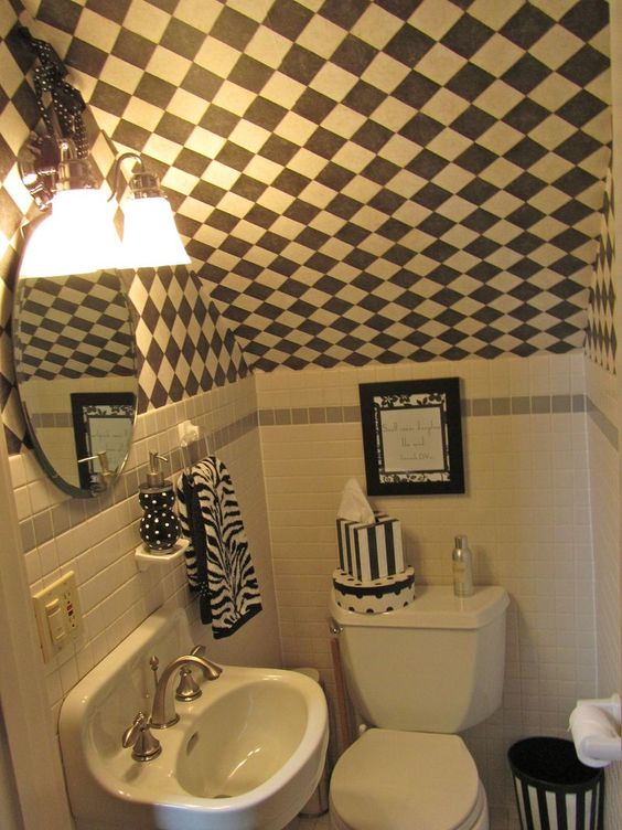 Cute idea for small under stairs bathroom not that for Small bathroom under stairs