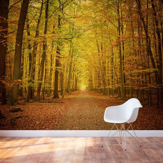 Trees autumn trees and forests on pinterest for Autumn forest wallpaper mural