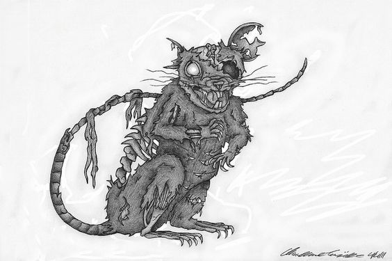 Zombie Rat by cheyennefrog, via Flickr