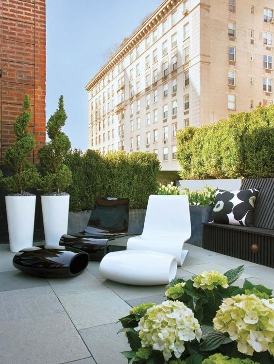 Roof garden plant specialists roof terrace for Terrace garden plants