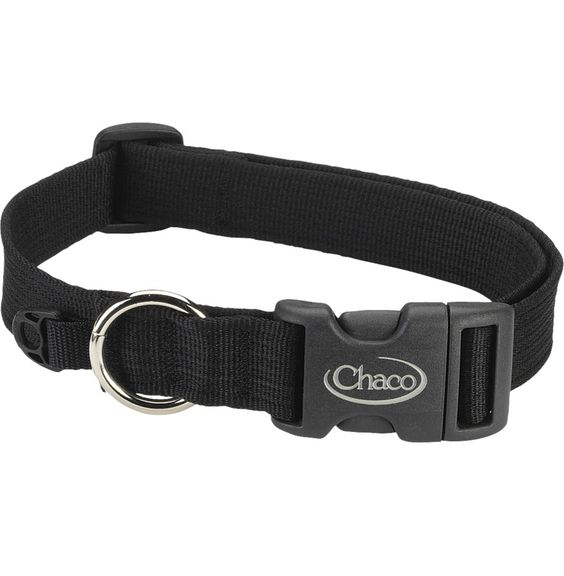 This would be cute monogrammed for my two girl dogs