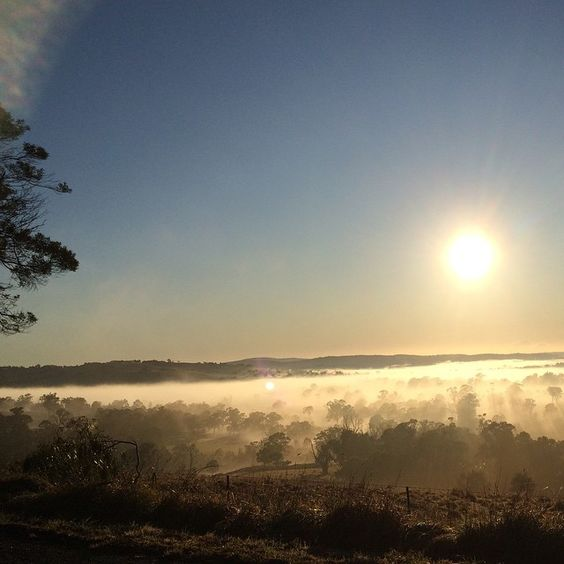 Yesterday's gorgeous #sunrise with the valley engulfed with fog. Another glorious #winter day!  @theloch #southernhighlands #sun