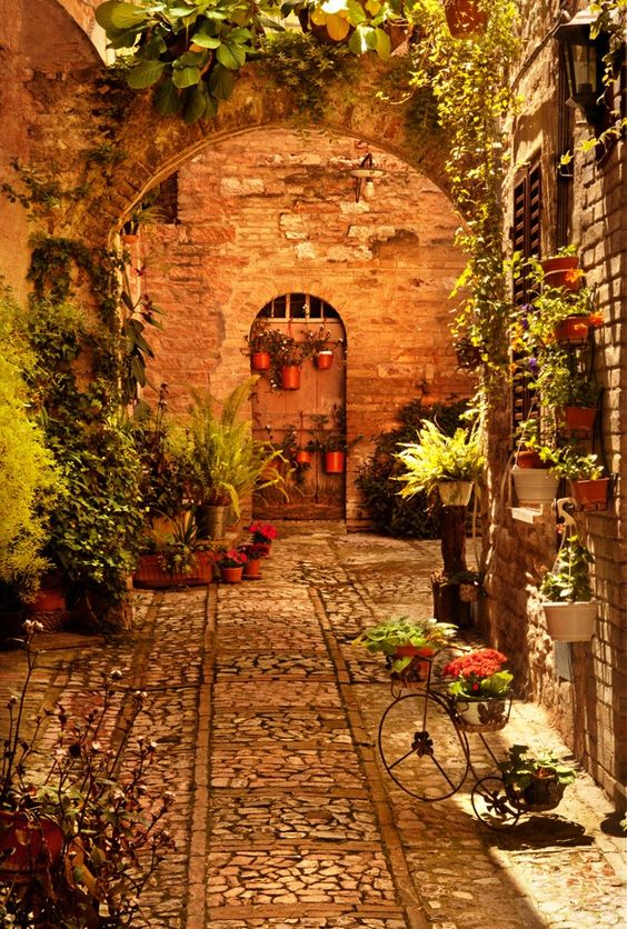 best wine tours in tuscany italy - photo#43