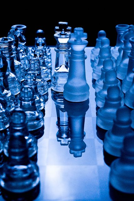 Blue | Blau | Bleu | Azul | Blå | Azul | 蓝色 | Color | Form | Texture | A meeting of kings... by Gary Roseborough