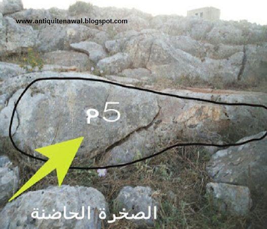 اشارة سمكة حفر وبجانبها على نفس الصخرة جرن صينية Novelty Sign Novelty Home Decor