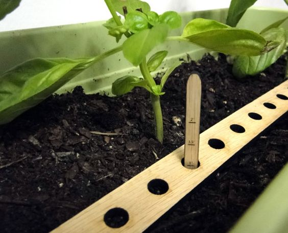 Seed Spacer and Dibber set by Beadeux on Etsy (Home & Living, Outdoor & Gardening, Gardening Tools, Gardening, seed spacing, seed planting, dibber, straight dibber, wooden ruler, garden tool, garden spacer, spring gardening, vegitable gardening, veggie garden help, planter, garden planning)