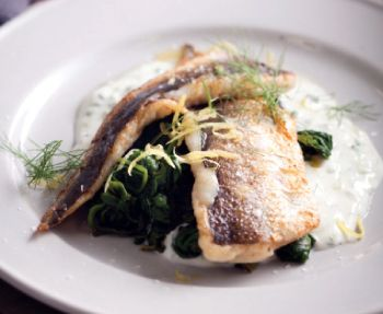 Pan-fried fish with cucumber yoghurt http://www.eatout.co.za/recipe/pan-fried-fish-cucumber-yoghurt/