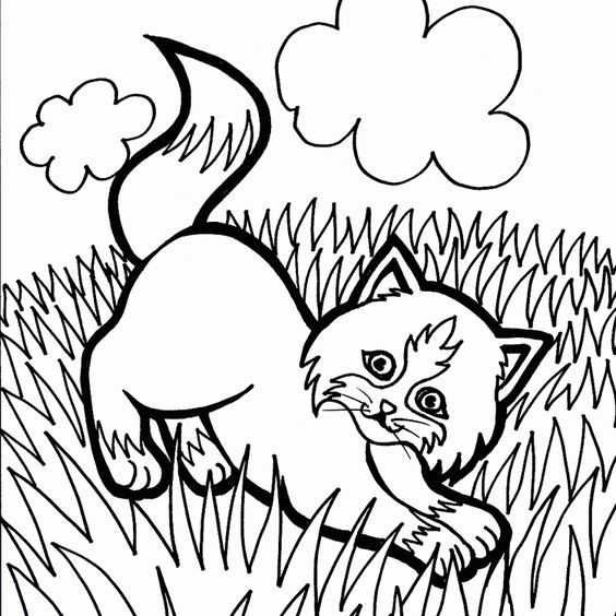 Katzen (9) malvorlagen