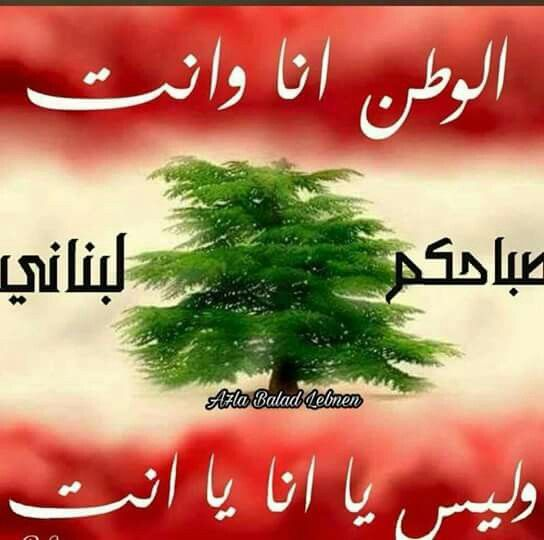 Pin By Elham Saliba On Lebanon Lebanon Independence Day Lebanon Good Morning Beautiful Images