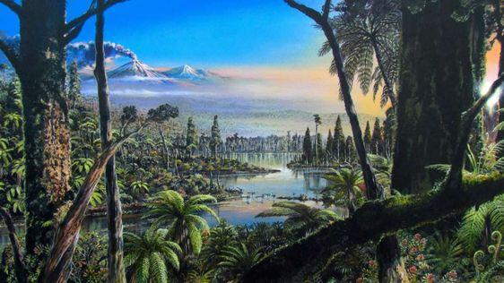 Er is bewijs gevonden dat Antarctica mogelijk een oud regenwoud was