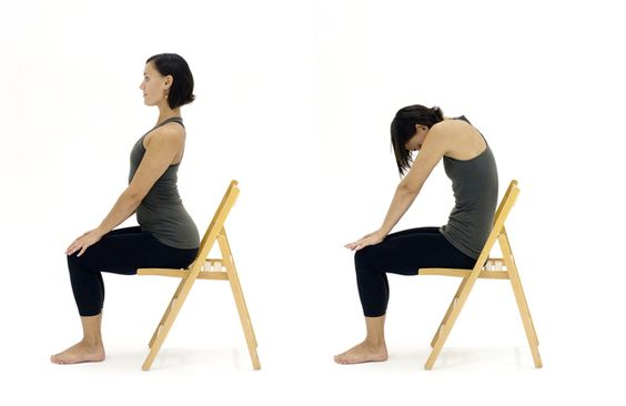 Marjariasana on Chair (Seated Cat-Cow Pose)