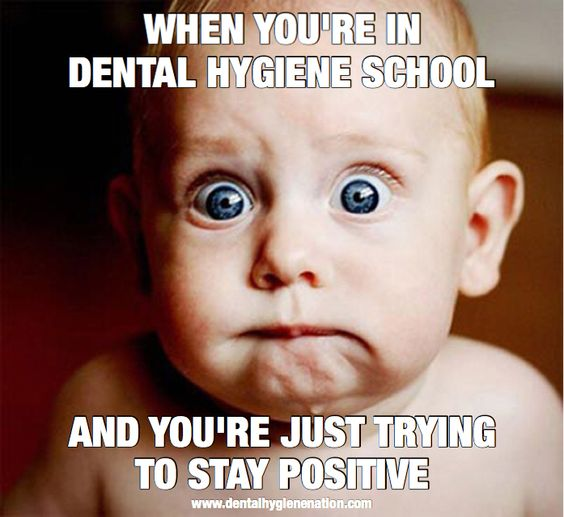 dentist dentistry and dental school Besides a few exceptions, the majority of dental students possess a bachelor's degree before they enter dental school.